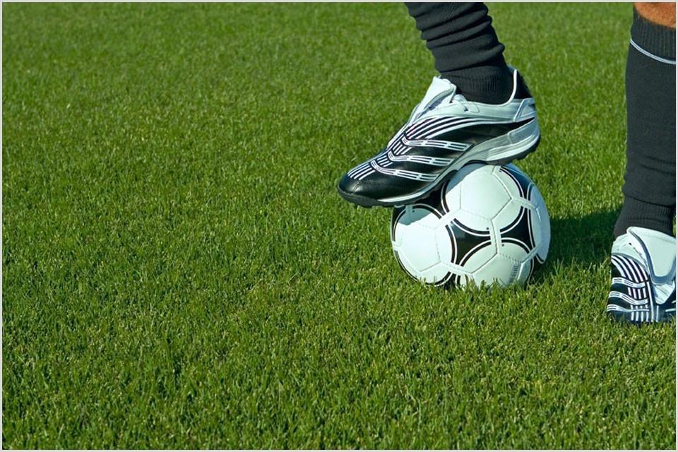 Спортивные газоны своими руками
