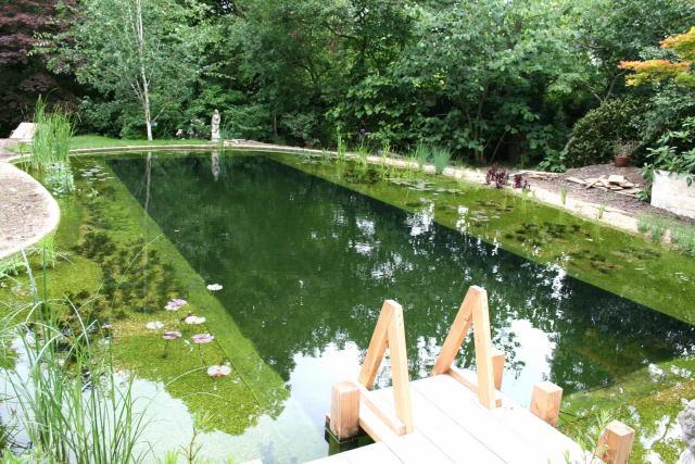 Строительство пруда для купания на даче