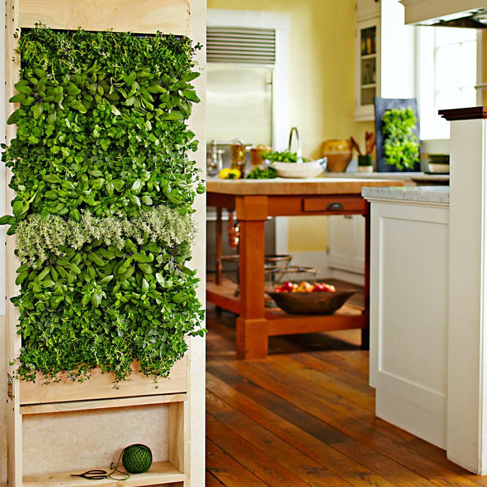 теперь Выращивание зелени в квартире круглый год этому